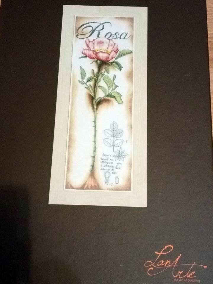 Rózsa -Lanarte készlet